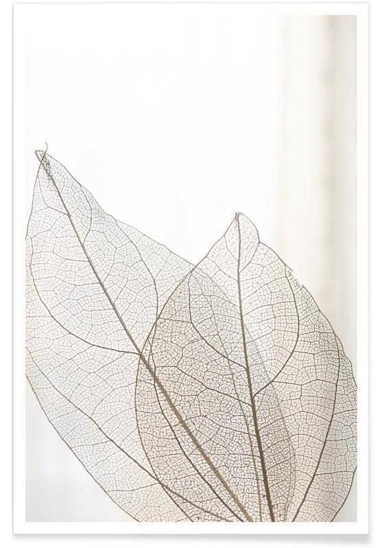 Bladeren en planten, Skeleton Leaves poster