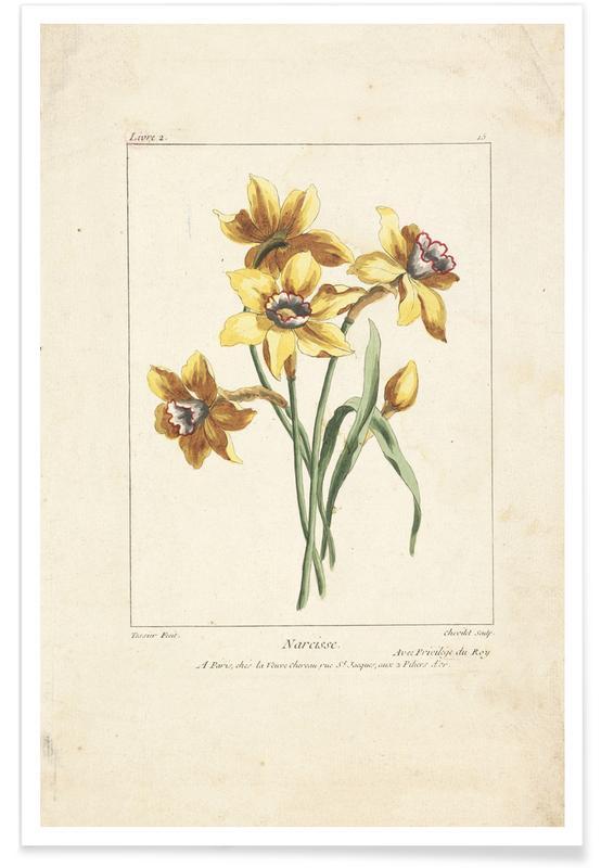 Narcisse, Caillou, Marguerite, 1755 - Justus Chevillet poster