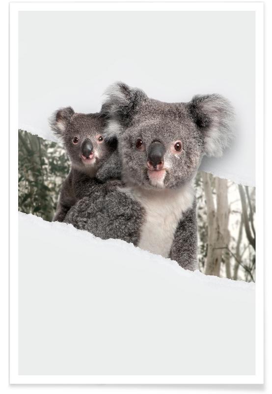 Art pour enfants, Koalas Torn Paper affiche