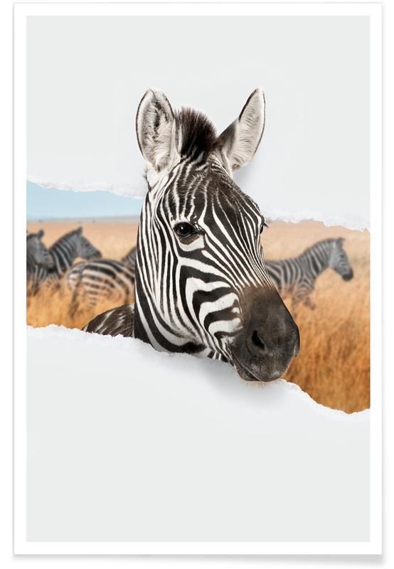 Art pour enfants, Zebra Torn Paper affiche