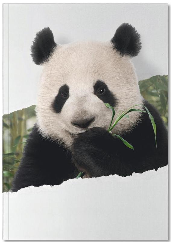 Kunst voor kinderen, Panda Torn Paper Notebook