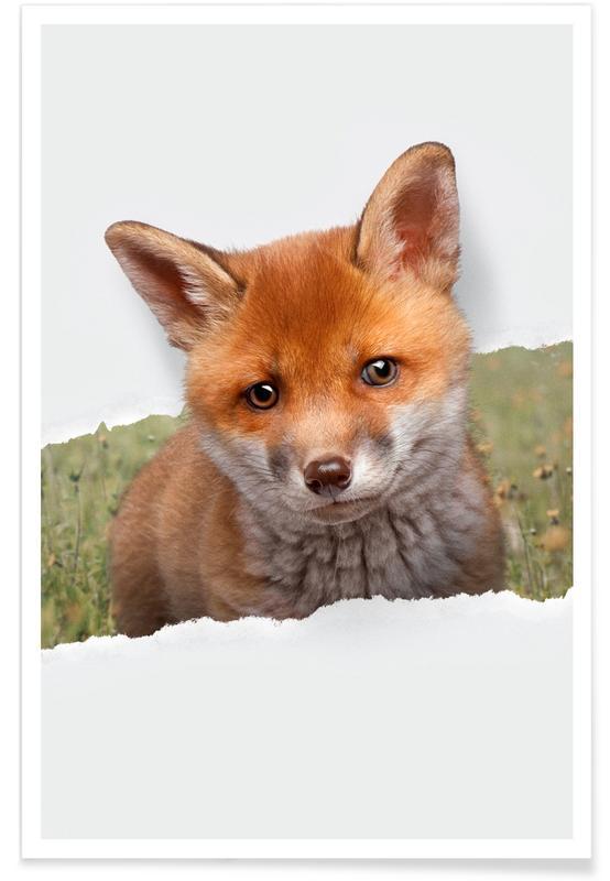 Kunst voor kinderen, Baby Fox Torn Paper poster