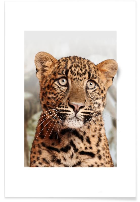 Luipaarden, Kunst voor kinderen, LEOPARD CUB poster