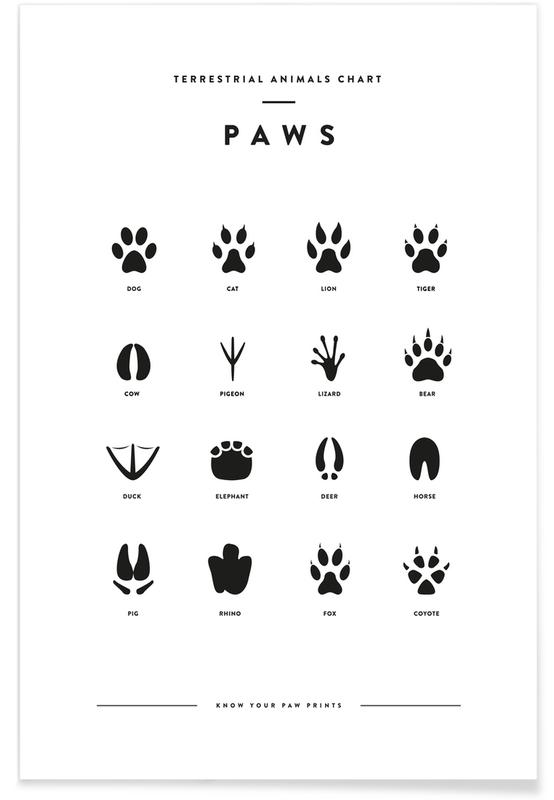 Paws chart affiche