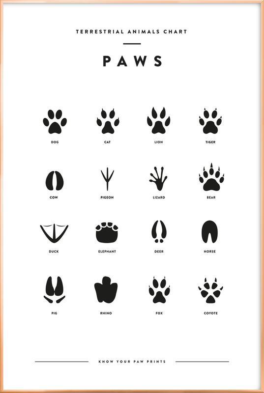 Paws chart Poster i aluminiumram