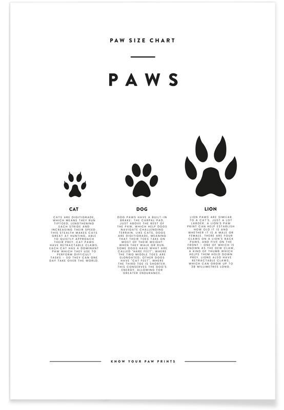 Blanco y negro, Arte para niños, Animal sizing chart póster