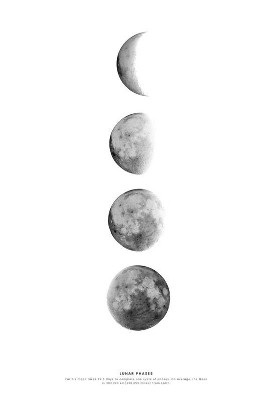 Phases of the Moon Aluminium Print