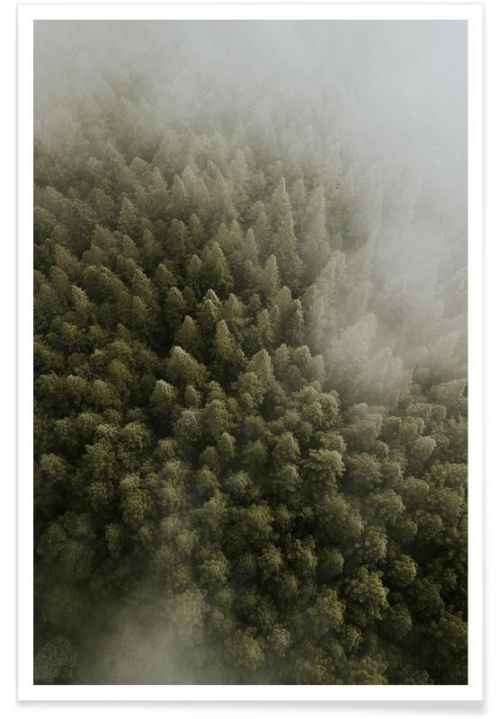 Wälder, Bäume, Enchanted Forests -Poster