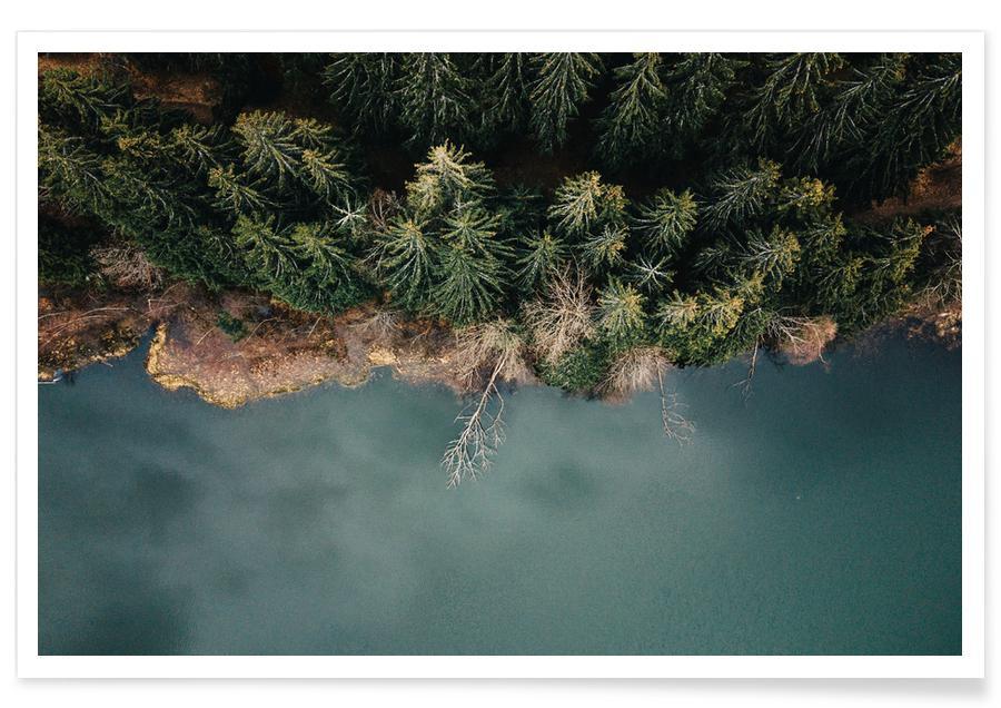 Oceanen, zeeën en meren, Bossen, Natural Division poster