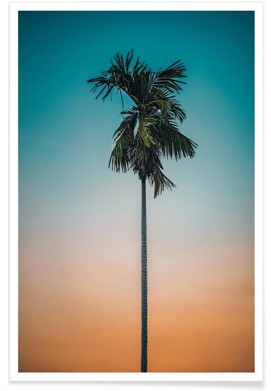 Palmiers, Couchers de soleil, Holiday Dreamin' affiche