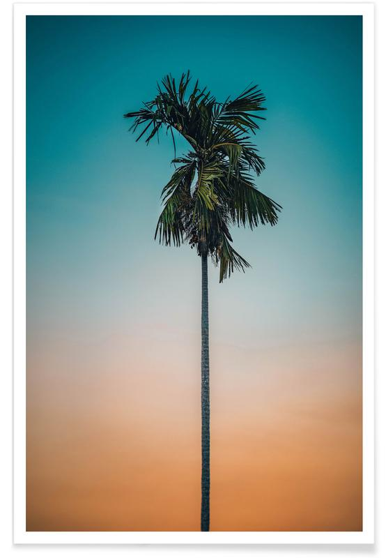 Palms, Sunsets, Holiday Dreamin' Poster