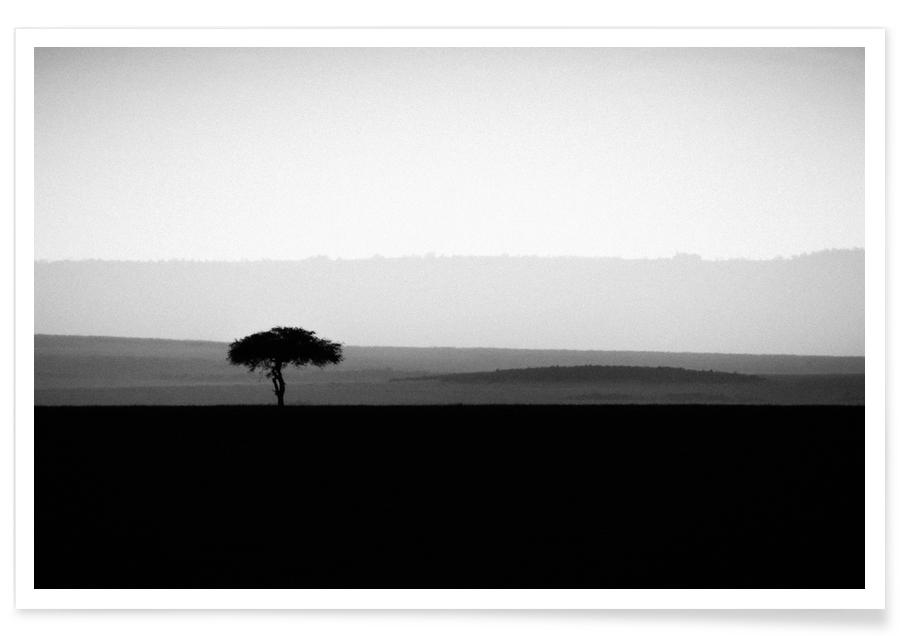 Black & White, Sights & Landmarks, The Sole Tree Poster