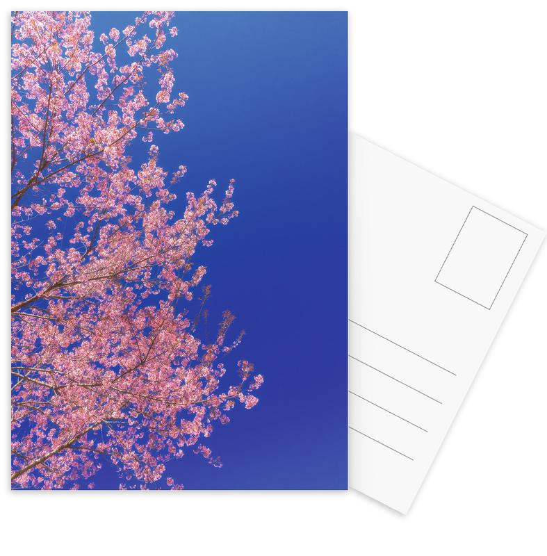 Cherry Blossom, Japan -Postkartenset