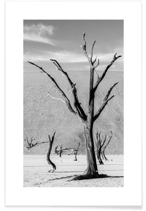 Deserti, Bianco & nero, Viaggio, Deadvlei Trees poster