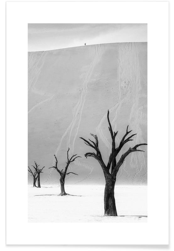Ørkener, Sort & hvidt, Rejser, Deadvlei Trees II Plakat
