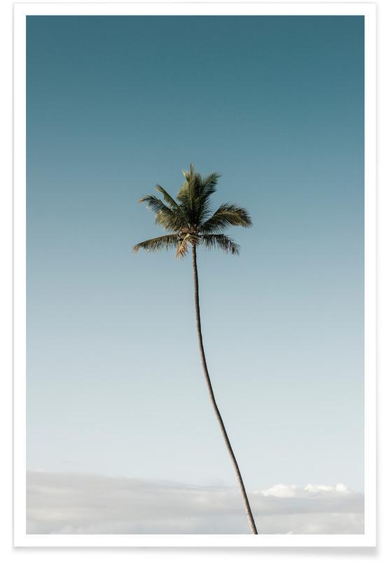 Palmer, Tall Palm Plakat