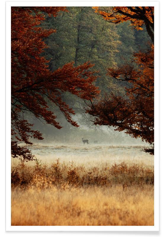 Forests, Deer, Just Us Poster