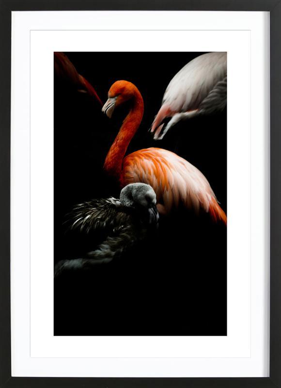 The Flock Poster i träram