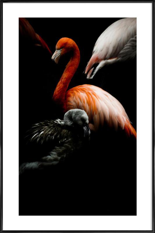 The Flock -Bild mit Kunststoffrahmen