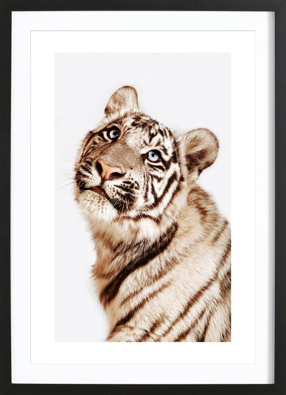 King in the Making Framed Print