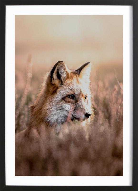Fox in Reeds -Bild mit Holzrahmen