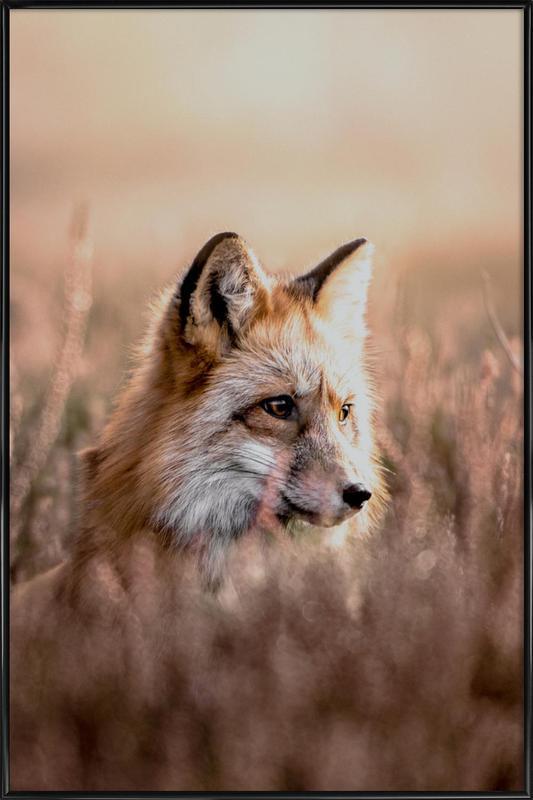 Fox in Reeds -Bild mit Kunststoffrahmen