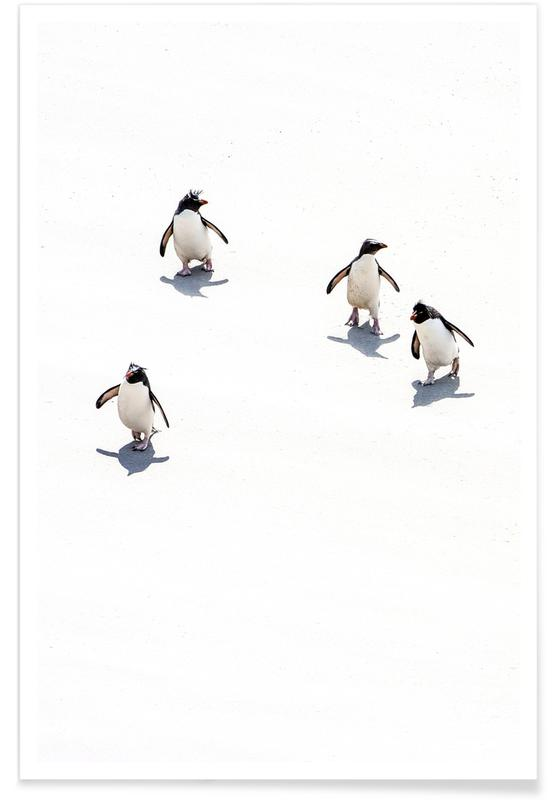 Pingouins, Art pour enfants, Snow Penguins III affiche