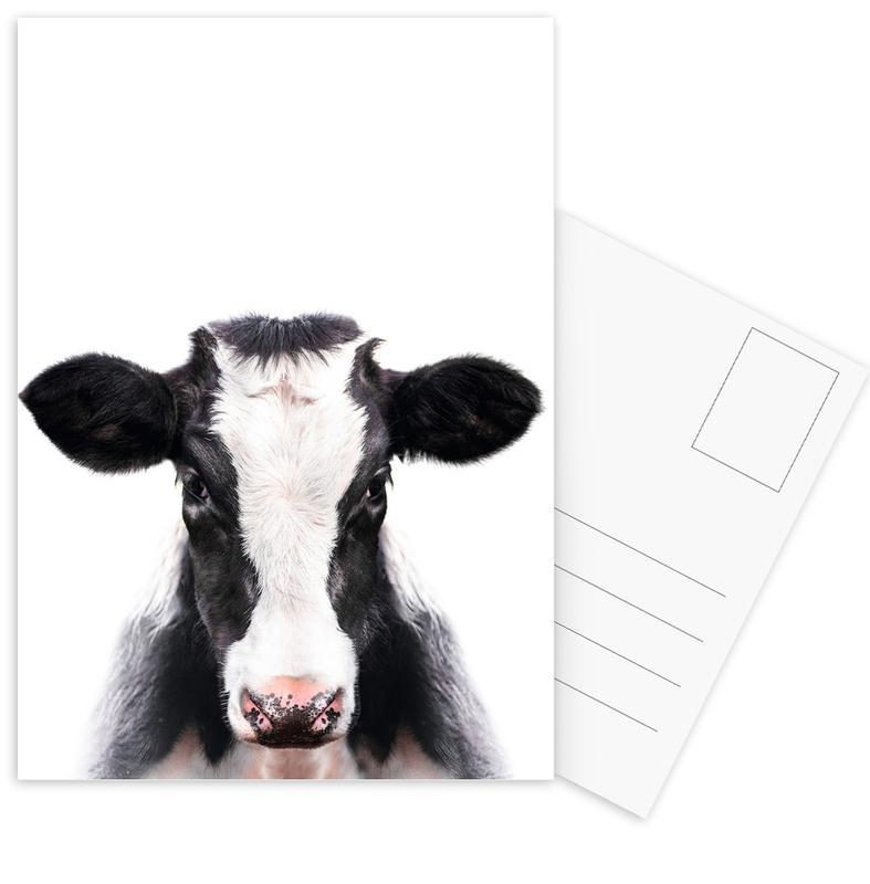Kühe, Daisy Cow -Postkartenset