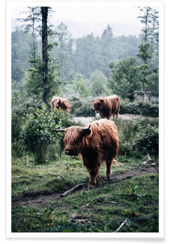 Koeien, Seen But Not Herd poster