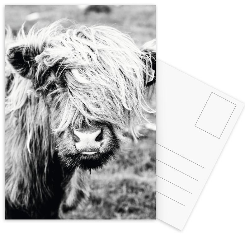 Cows, Black & White, Moo-dy teen Postcard Set