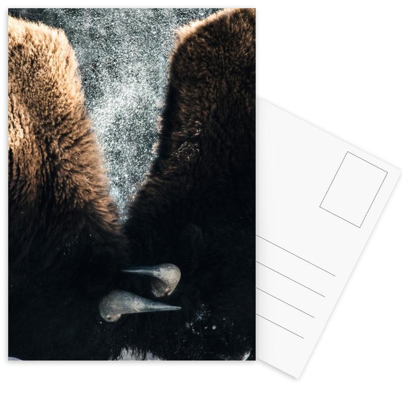 Kühe, Interlocked -Postkartenset