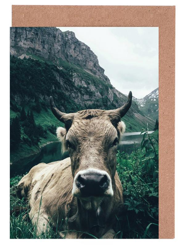 Kühe, A Natural Habitat -Grußkarten-Set