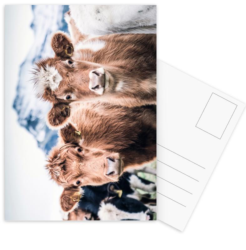 Cows, Double Trouble Postcard Set