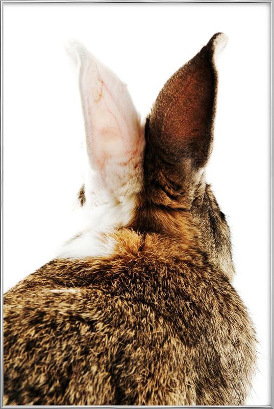 Bunny Ears Poster i aluminiumram