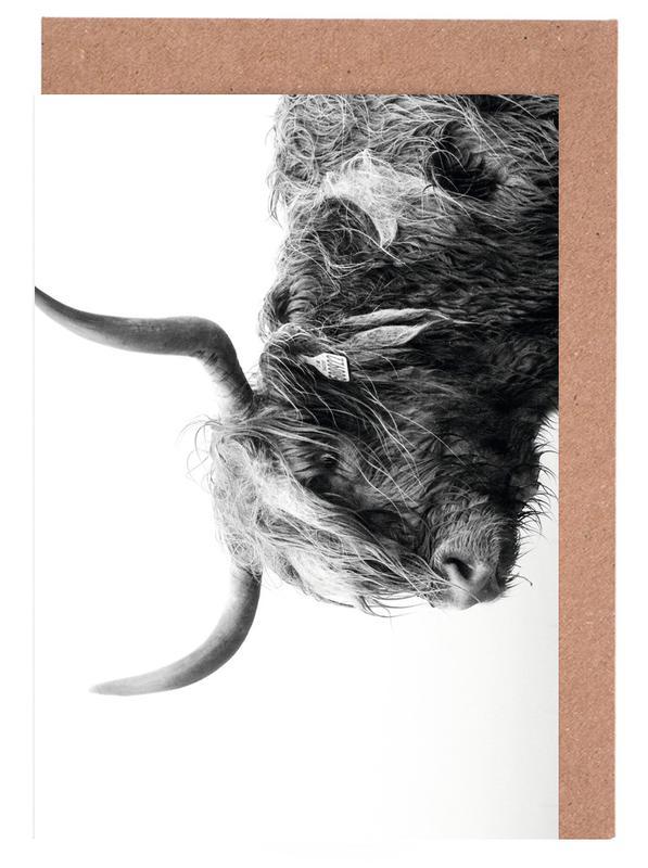 Kühe, Schwarz & Weiß, Standing Sentinel -Grußkarten-Set