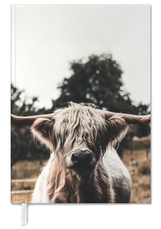 Kühe, Hochlandrinder, Boris Highland Cow -Terminplaner