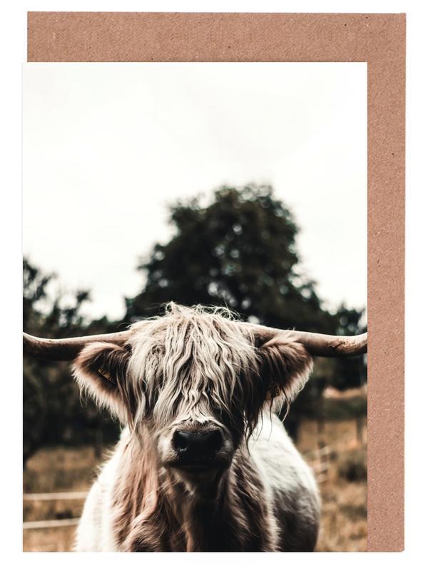 Hochlandrinder, Kühe, Boris Highland Cow -Grußkarten-Set