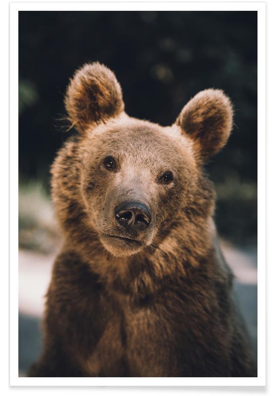 Bären, Closer Than You Think -Poster