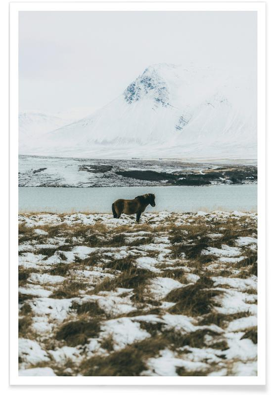 Horses, Sights & Landmarks, Born For The Cold Poster