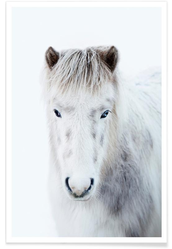 Pferde, Ghost Horse -Poster