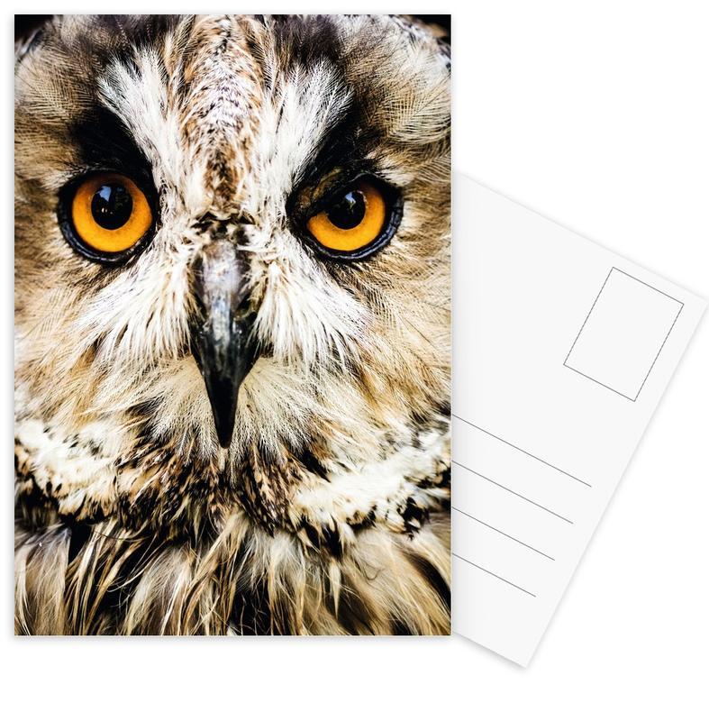 Hedwig -Postkartenset
