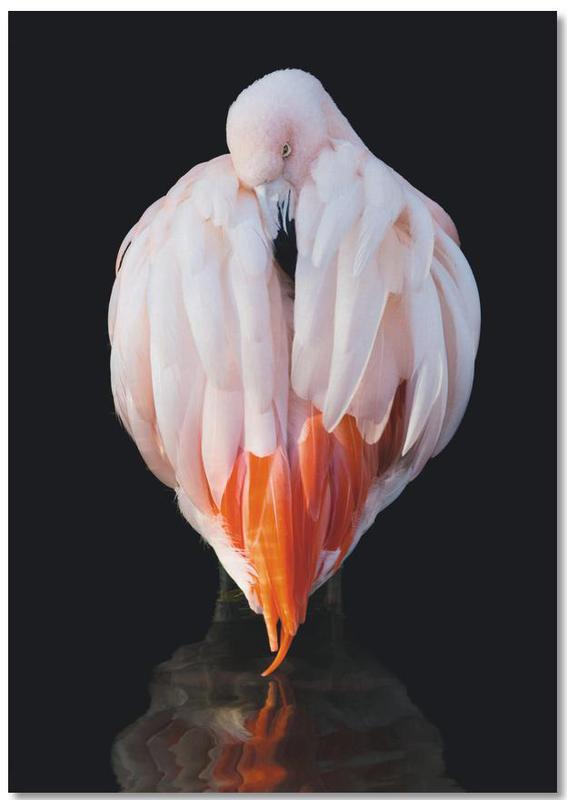 Flamingo in Reflection -Notizblock