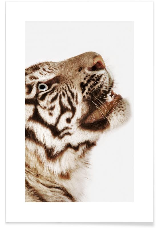 Safari dyr, Portrait of a Future King Plakat