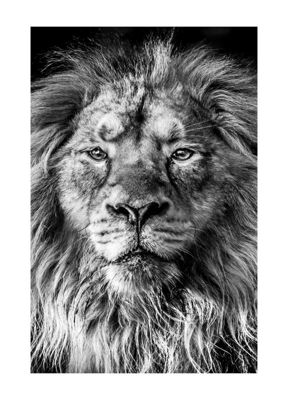 Leader of the Pack Canvas Print