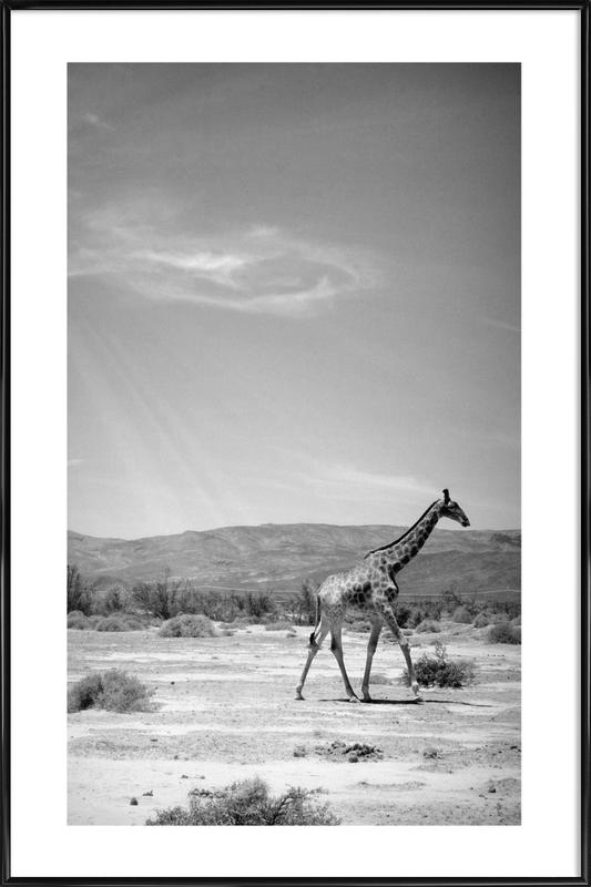 Light on the Savanna Framed Poster