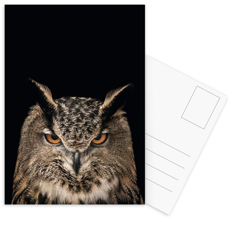 Chouettes, Tawny Owl cartes postales