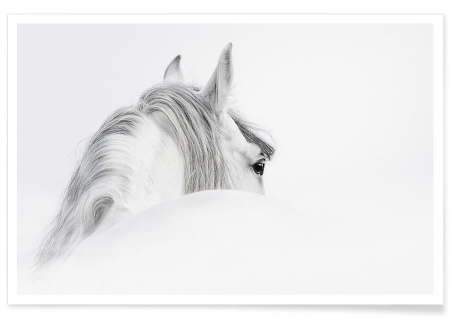 Heste, Sort & hvidt, Silver Mane Plakat