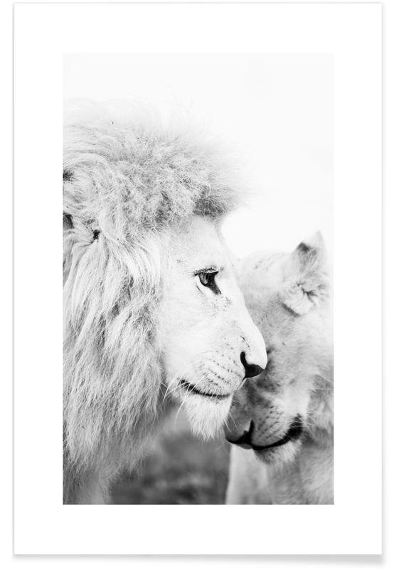 Sort & hvidt, Safari dyr, A Softer Side Plakat