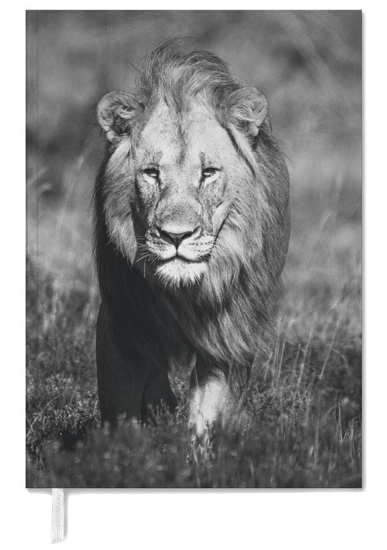 Black & White, Safari Animals, African Heat Personal Planner