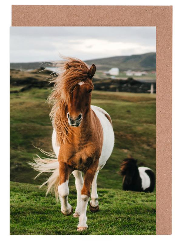 Shetland Ponies cartes de vœux
